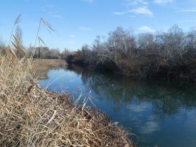 Velamos por el agua y los sistemas acuáticos