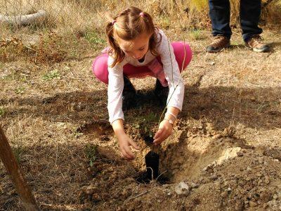 Voluntariado de potenciación de la biodiversidad en Aranjuez