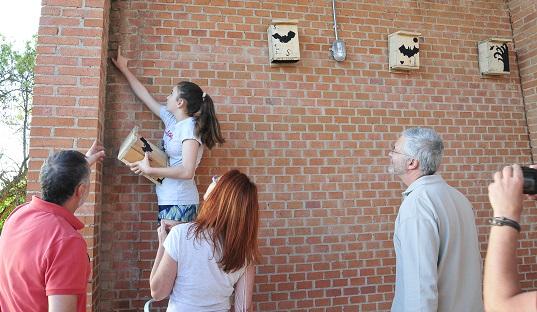 Taller de construcción e instalación de refugios para murciélagos en el CEA El Caserío de San Fernando de Henares