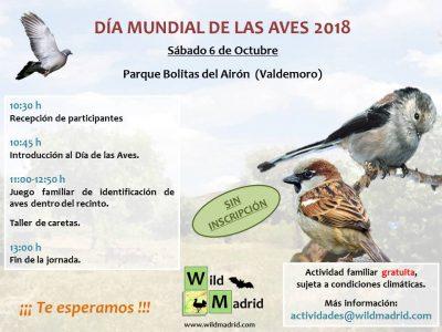 Ayer estuvimos en Valdemoro celebrando el día de las aves