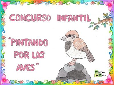 I concurso infantil: Pintando por las Aves