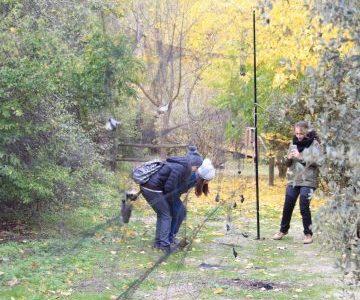 Colaboramos con el voluntariado de Parques Nacionales