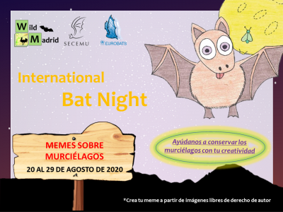 Nos sumamos a la celebración de la International Bat Night 2020